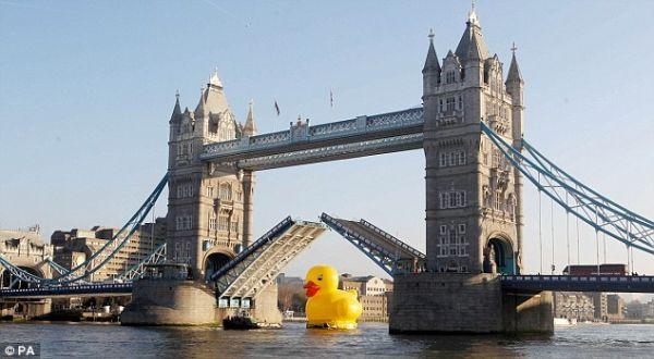 Bebek raksasa di Sungai Thames (Foto: PA)